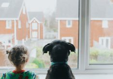 A Young girl and a black dog looking out a window onto houses. Space for copy.